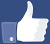 facebook_daumen_hoch_100